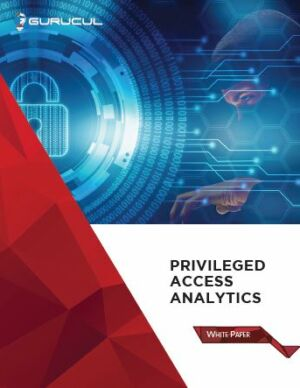 Whitepaper - Privileged Access Analytics