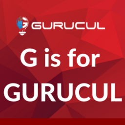 Gurucul user behavior analytics